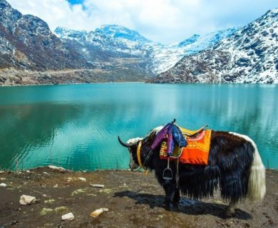 8 Activities Possible to Experience on Your Sikkim Tour
