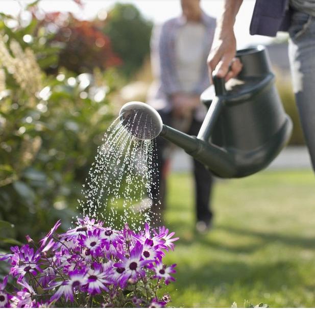 Benefits of Home Garden: For Better Health