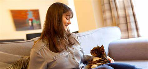 5 Tricks to Keep Your Cat Happy